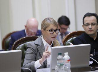 «Батьківщина» виступає за незалежний від президента Антикорупційний суд