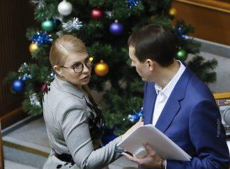 Валерія Дубіля обрано заступником Голови партії «Батьківщина»