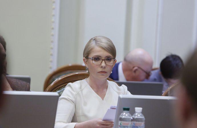 «Батьківщина» готова до дострокових виборів, 20 травня 2019р.