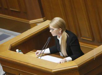 «Батьківщина» продовжує захист української землі