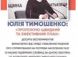 «Батьківщина» Кам'янського підтримує земляків у боротьбі проти підвищення тарифів