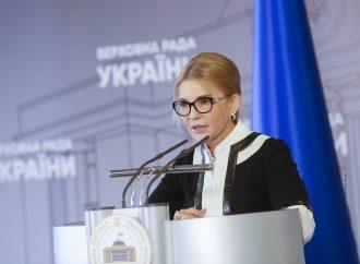 Юлія Тимошенко: Наша команда разом з аграріями передає в ЦВК документи для старту «земельного» референдуму